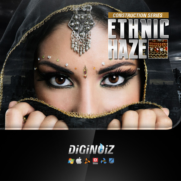 Diginoiz_-_Ethnic_Haze_Cd
