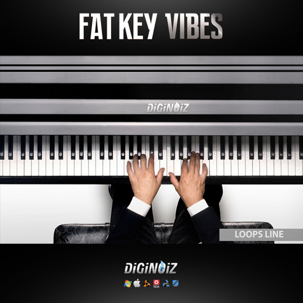 Diginoiz_-_Fat_Key_Vibes_Cover