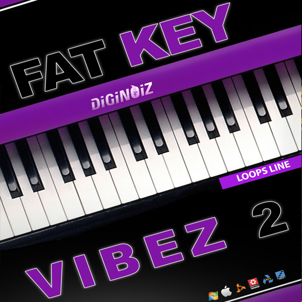 Diginoiz_-_Fat_Key_Vibez_2_Cd