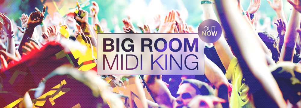 Big Room Midi King