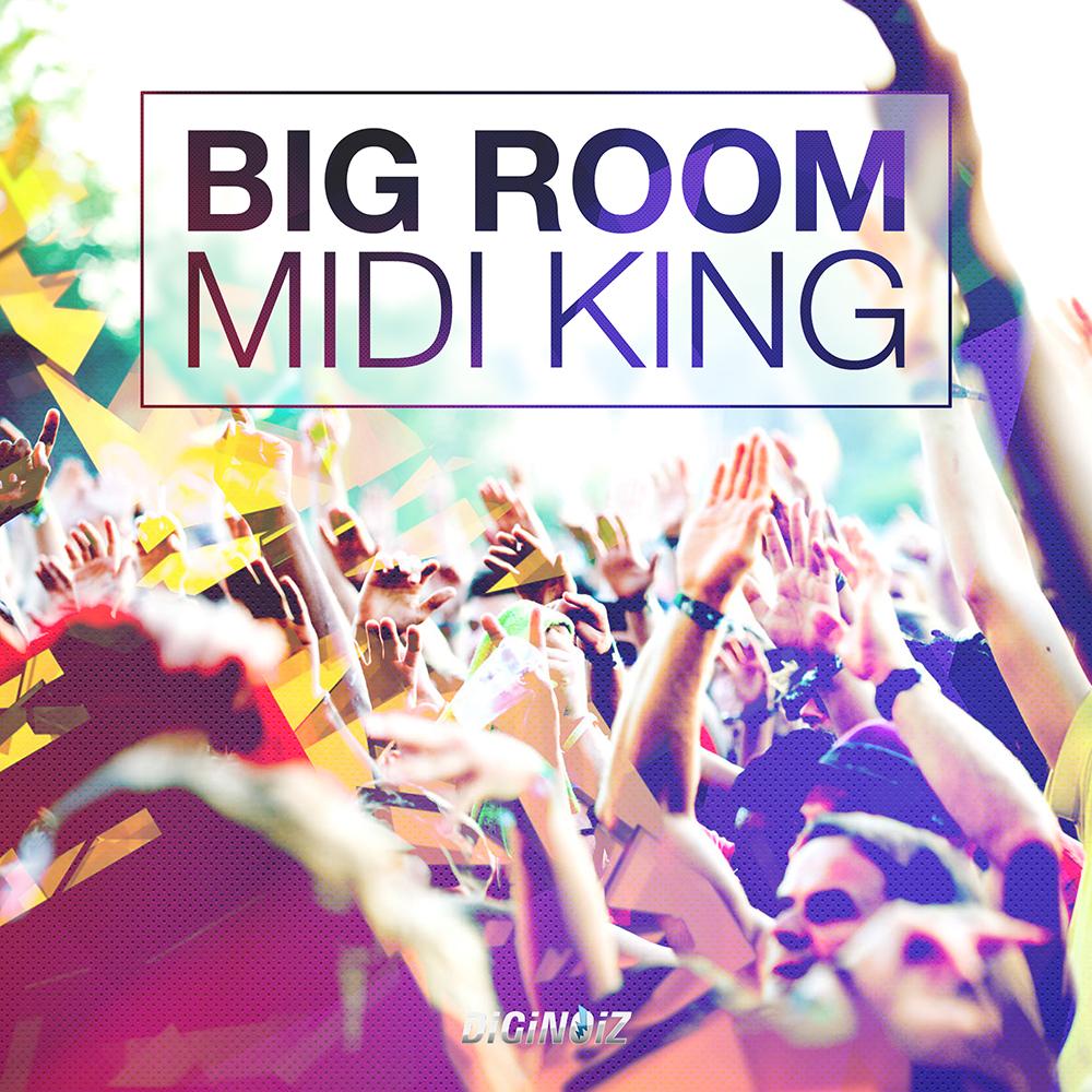 big room midi